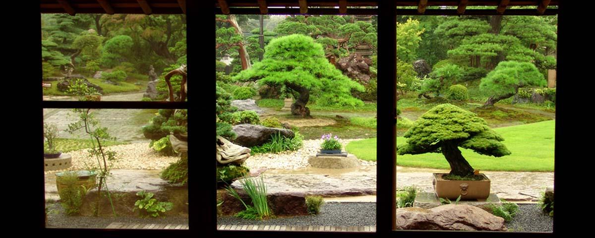 Jardín de bonsáis japoneses