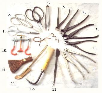 Bonsai herramientas