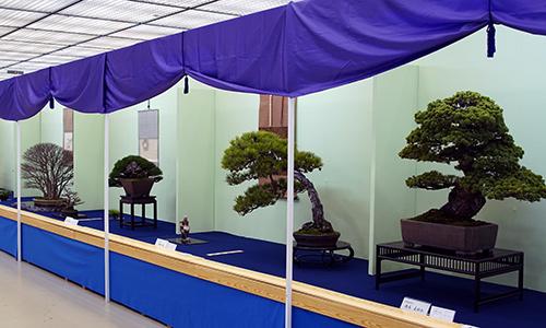 Exhibición Taikan-Ten 2018